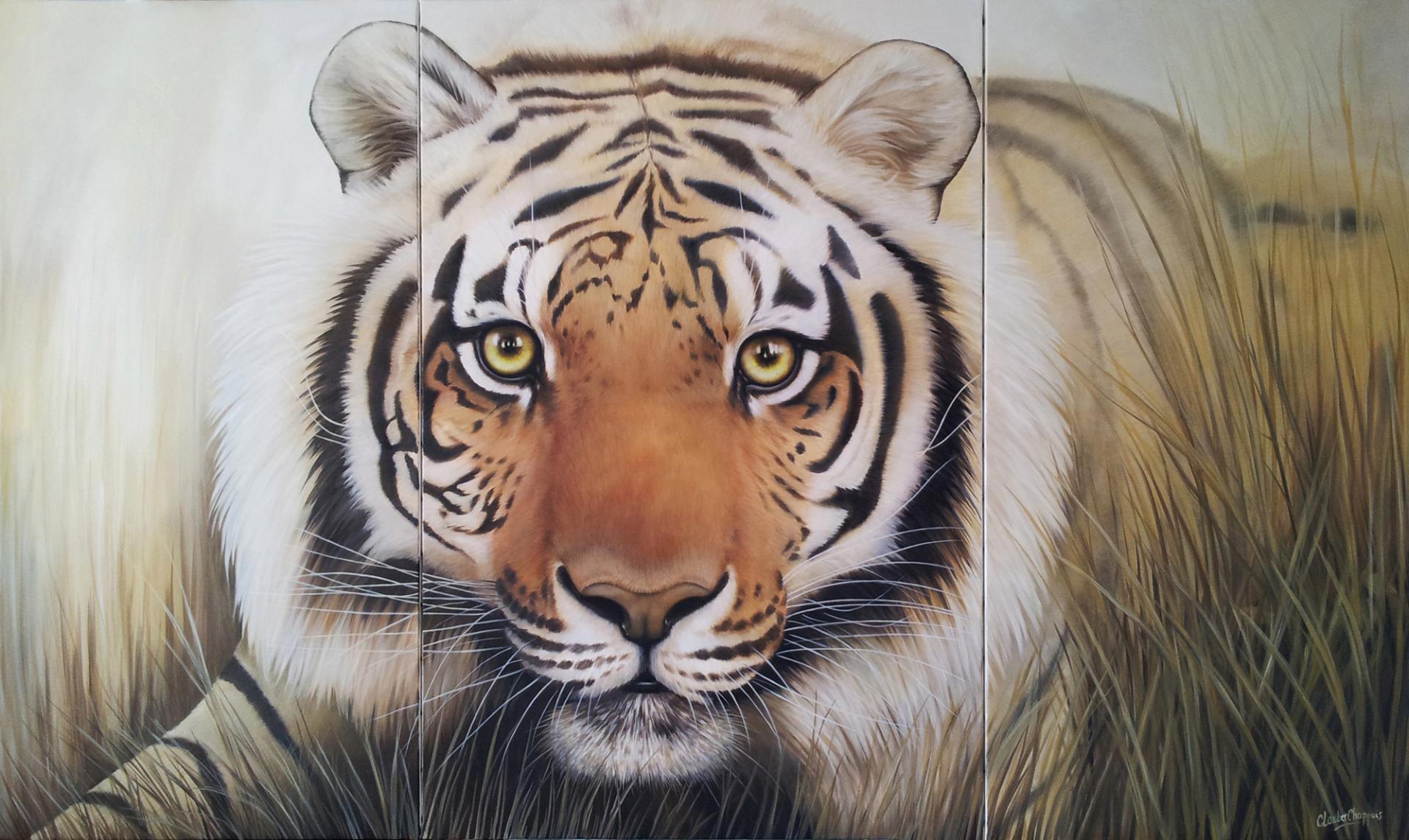 Tigre 120x200cm