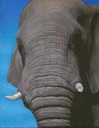 Elephant au pastel 50*70cm