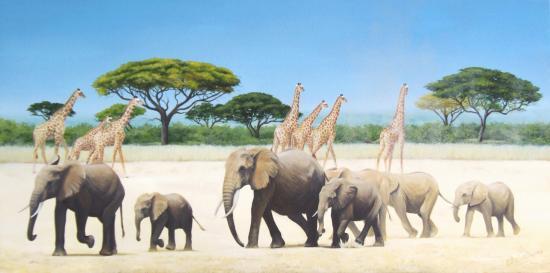 marche-des-elephants2sitenew.jpg