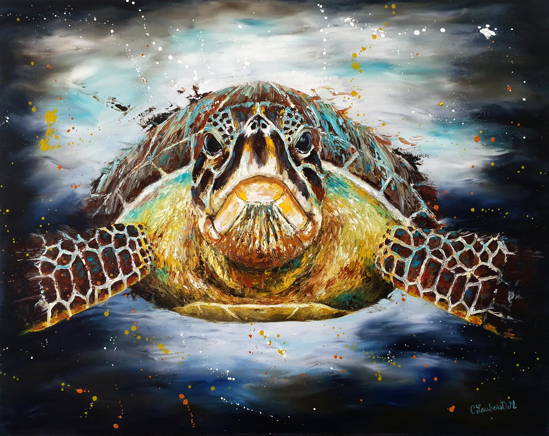 Tortue Luth 73x92cm
